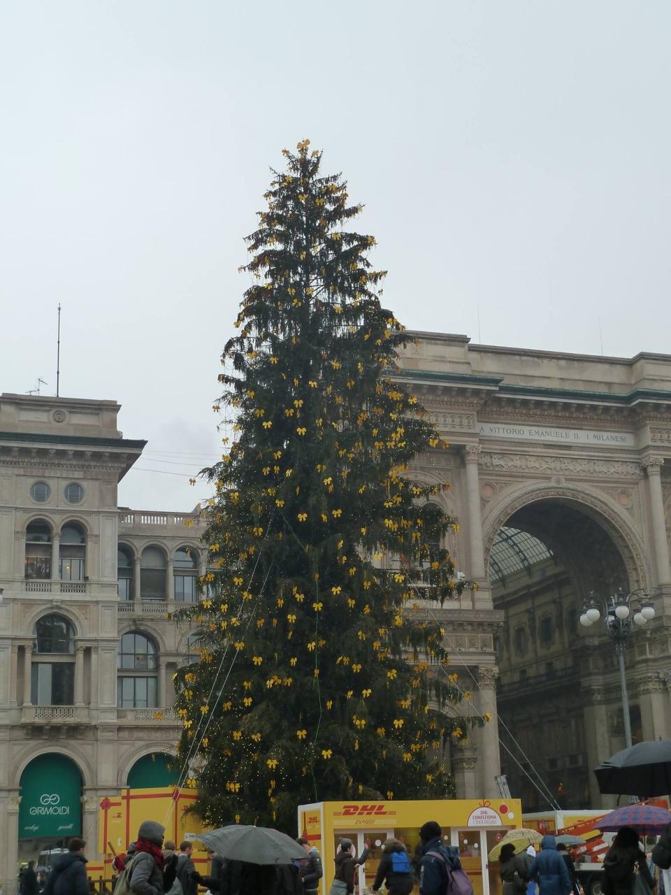 albero di Natale in piazza Duomo a Milano - foto di Pasquale Campolo