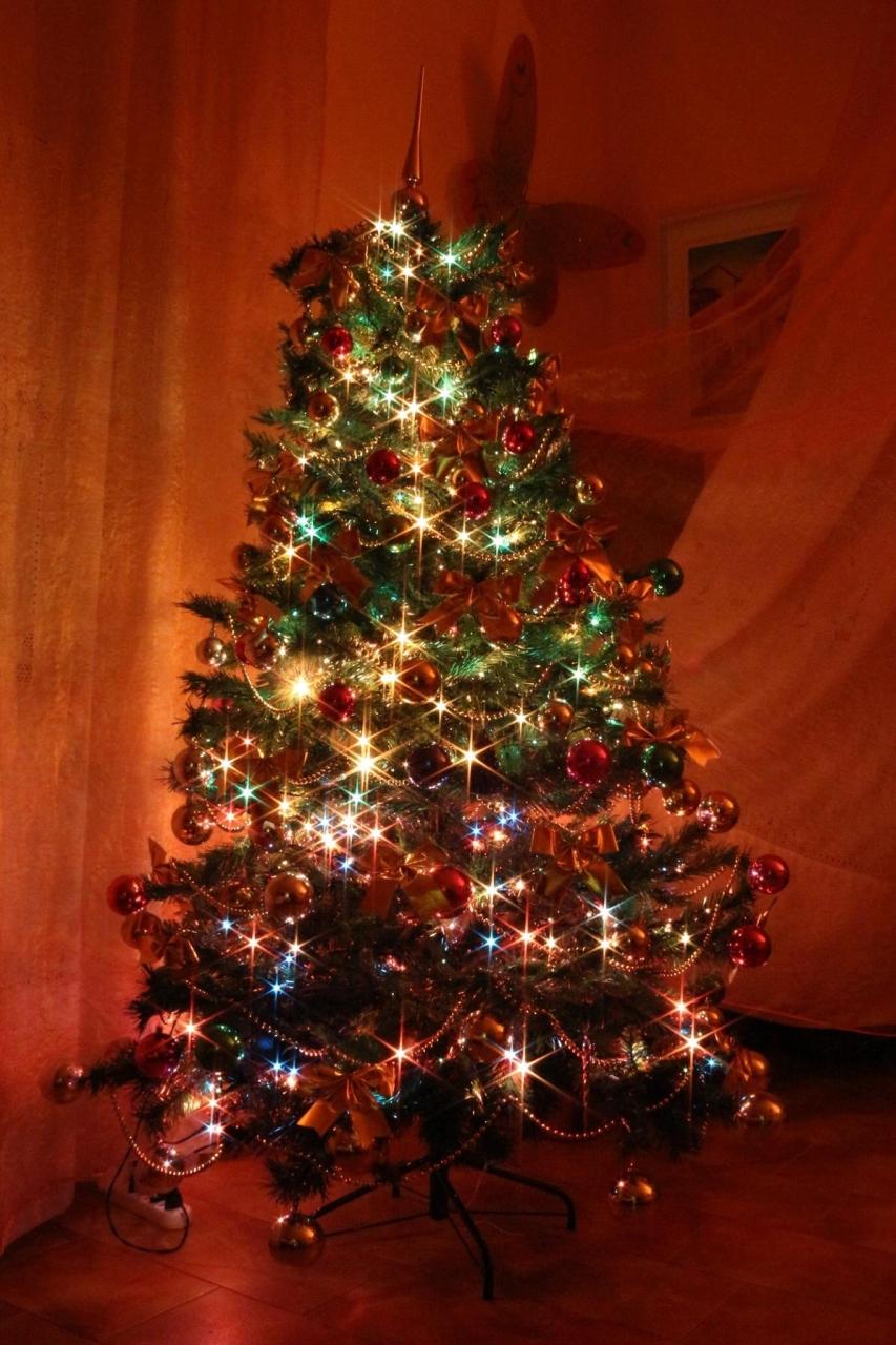 albero di Natale a casa del fotografo Pasquale Campolo